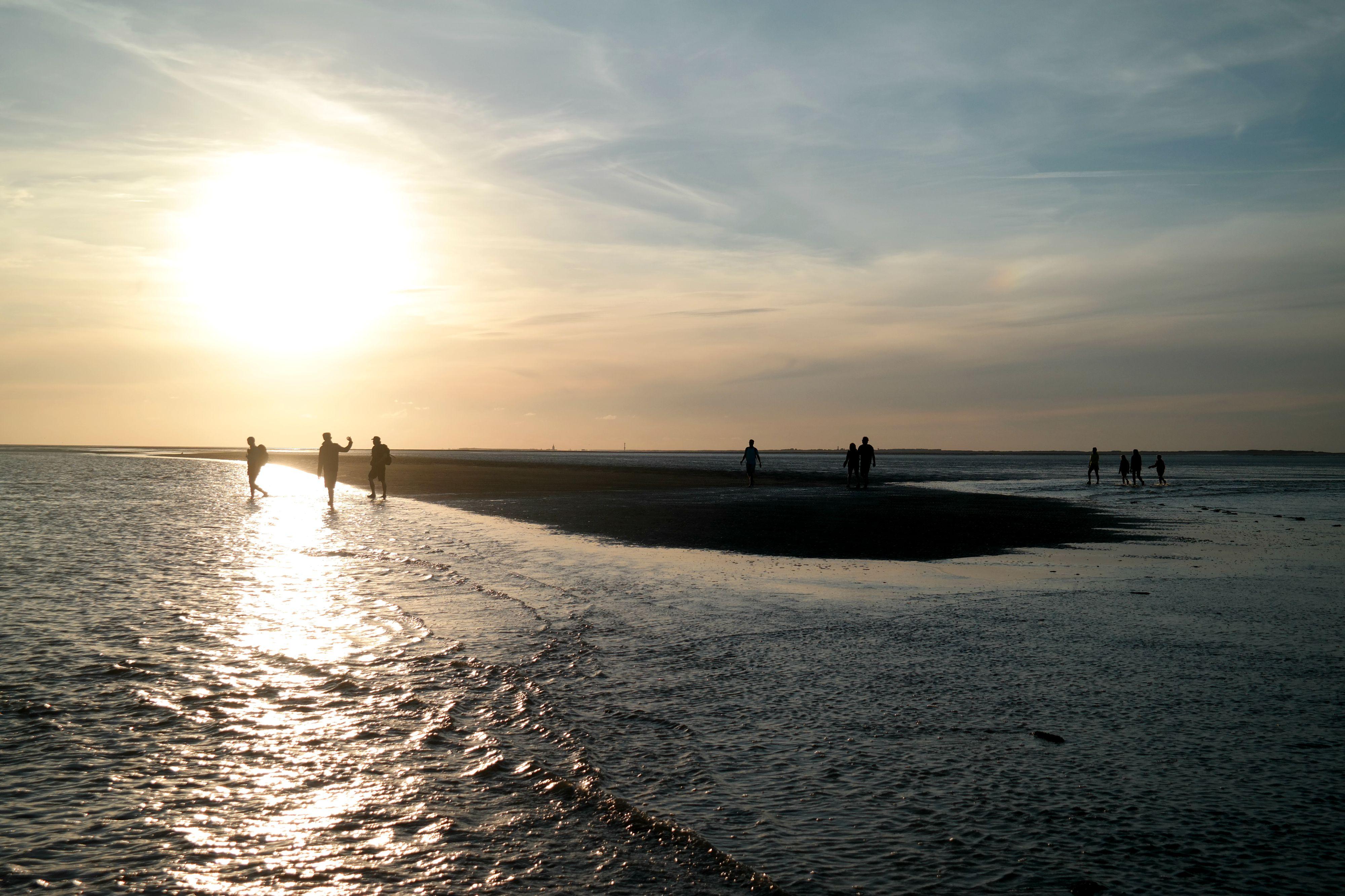 Wattwandern Nordsee